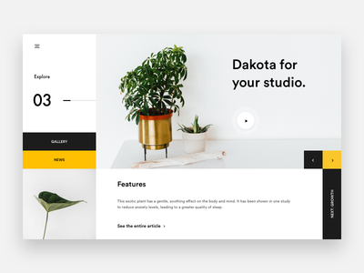 Dakota Plant - #2 Layout brown white web plant minimal product webdesign yellow explore landing