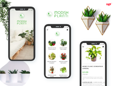 Modish Plant App screen icon design android typography branding animation app design design
