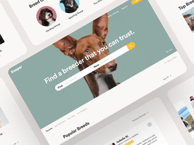 Kooper recommendation review adopt dog service ux ui web feedback customer startup app