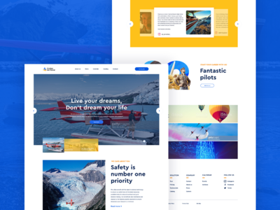 Flight Training And Aircraft Rental Website - Concept