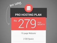 Pro Hosting Plan