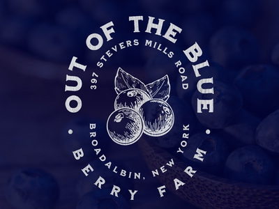 Out of the Blue Berry Farm type americana blueberry farm logo