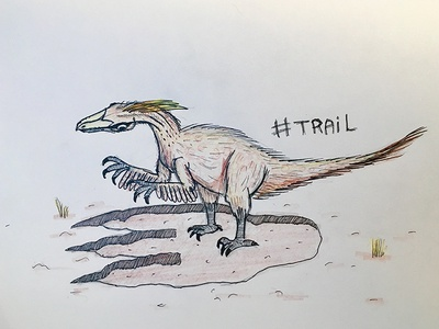 Day 22 - Trail