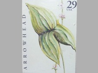Arrowhead Flower Stamp