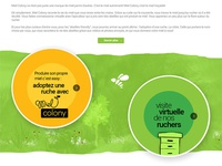 Honey web site design 2