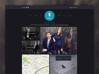 Billeshirts Website
