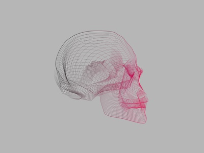 Skull Design illustration graphic design