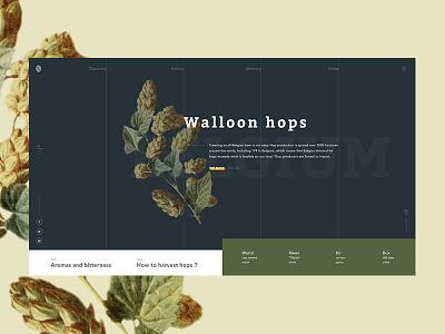 Walloon hops - Homepage belgium homepage hops beer