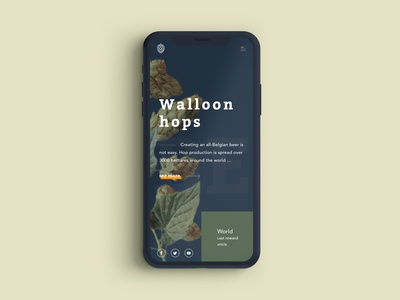 Homepage Walloon hops on iphone X belgium homepage hops beer