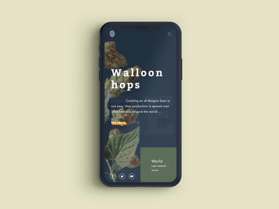 Homepage Walloon hops on iphone X