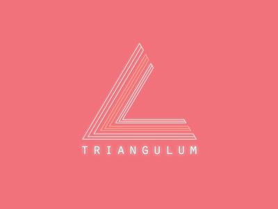 Triangulum 03 branding illustration beats adobe vector illustrator design space future explore
