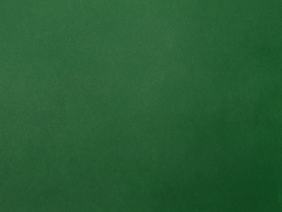 Green Poker Table Felt By Andr Neves Dribbble