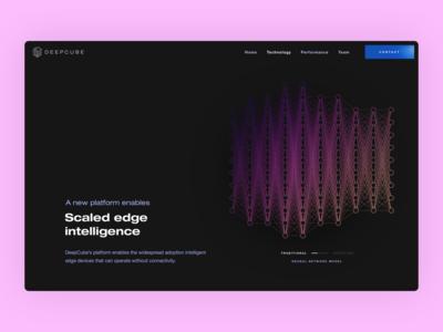 DeepCube Marketing Page - Traditional Neural Network web design agency ux design agency ui ux artificial intelligence ai user experience user inteface flat website design website web application app