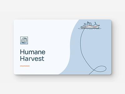 Bristol Wave Humane Harvest Fishing Practices ship fisherman boat process video animation sustainability sustainable process fishing fish vector illustration brand website design webpage website web design ui ux