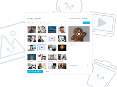 Thrive CMS Media Library Redesign