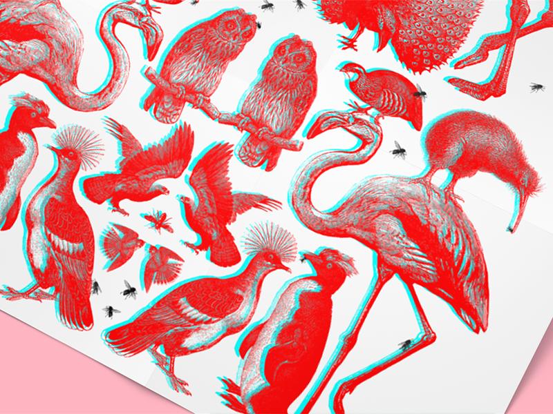 3D Birds + Bees rgb birdsandbees poster 3d