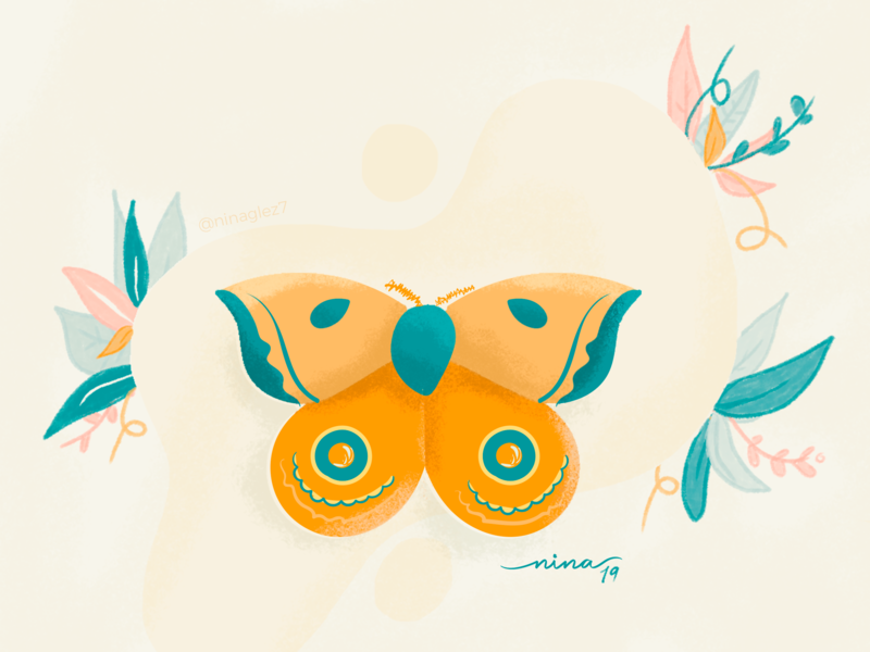Butterfly wacom colors butterfly nature hellodribbble illustration flower design vector