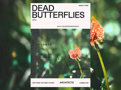 'Dead Butterflies' 🦋 and 'Meteor' ☄️ Single Posters fttwte graphicdesign typography type minimal brutalism poster dead butterflies meteor death death metal merch architects band