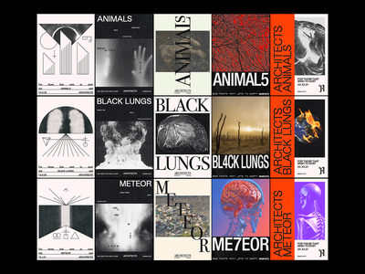 Unselected routes for Architects 'For Those That Wish To Exist' metal climate change animals death skull poster design band merch music architects poster brutalism line minimal illustration type graphic typography design