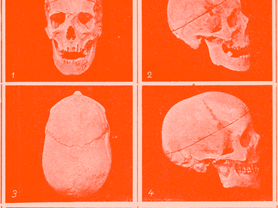 CRꪖNIUM print skulls cranium red illustration minimal type typography graphic design