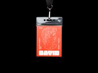 088. David