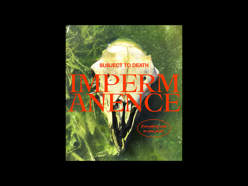 105. IMPERMANENCE death photography algae sheep skull poster red type minimal typography graphic design