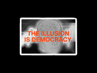 174. THE ILLUSION IS DEMOCRACY.