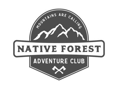 Vintage adventure badge
