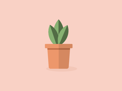 Daddy Plant garden vector illustrator illustration plant flat