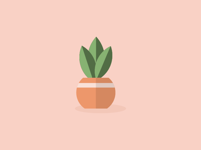 Mammy Plant garden vector illustrator illustration plant flat