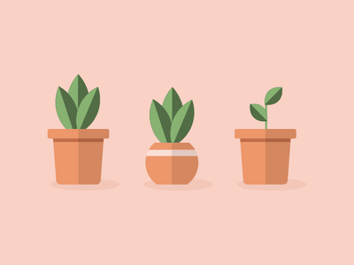 The Plant Family flat plant illustration illustrator vector garden