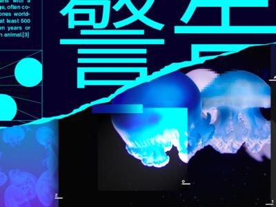 Full project Jellyfish   0A-Z1 Studio 🌊