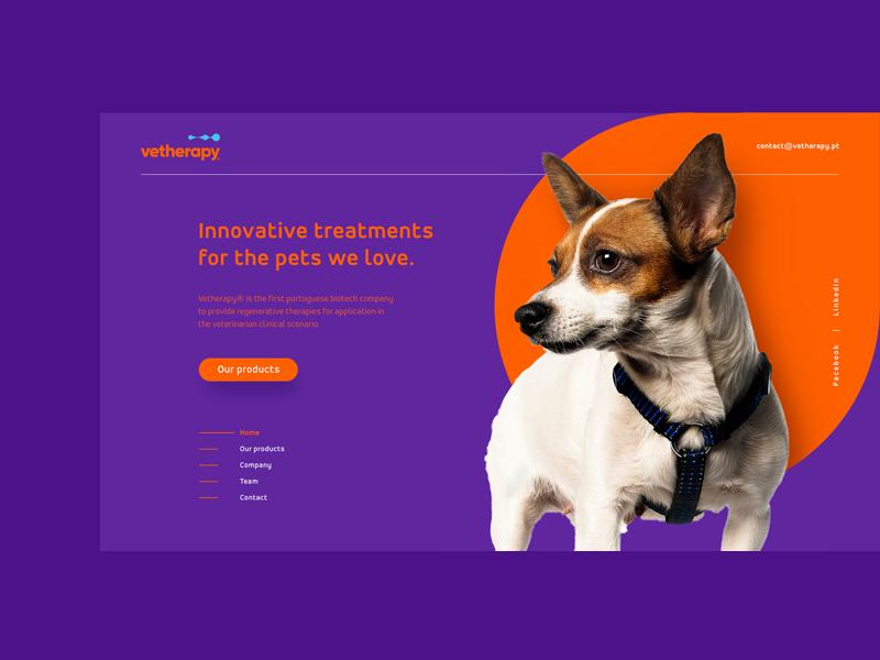 Projeto web Vetherapy ux ui interface interaction design