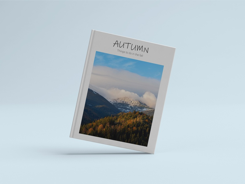 Autumn book cover blue white new autumn creative design graphic design graphic cover design book design book covers book cover cover