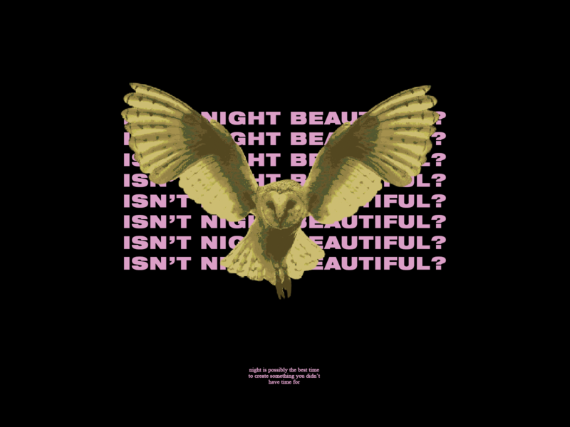 isn't night beautiful ? quote beautiful collage night owl branding brand animal aesthetic vector illustration design