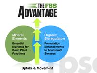 The FBS Advantage