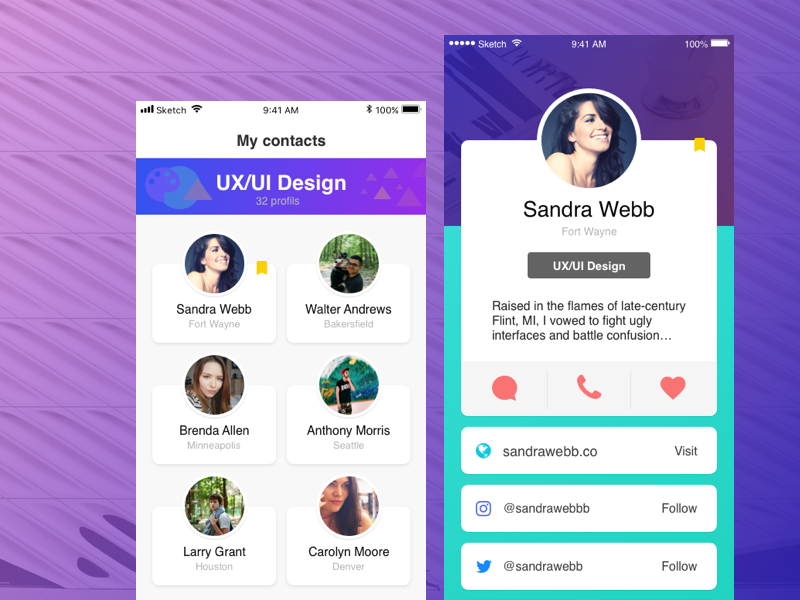 UXUI sketch ui ux app profile ios