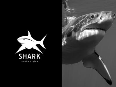 Animal logo Shark stationery king logo2018 color animal gradient agency vector construction colorful visual typography monogram illustration stationary logo identity design brand branding