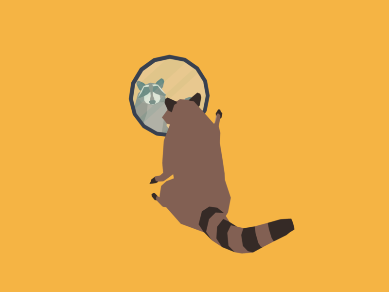Reflection raccoons raccoon minimalist blender low poly illustration 3d lowpoly