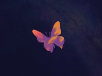 Dreamy Butterfly for Future Project