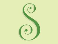 S letterform