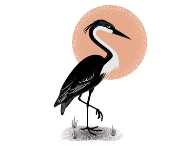 Heron spotillustration bird heron illustrator flat illustration illustration