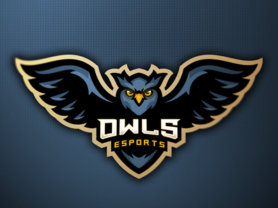 Owl owl logo owls owl logotype sport logo animals sportlogo mascotlogo vector sports logo sports gaming esports mascot logo mascot design branding logo athayadzn illustration