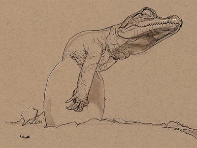 Crocodile hatching 2