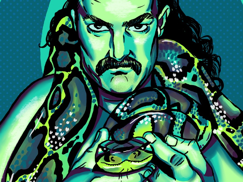 Jake the Snake digital drawing art wrestling illustration digital digitalarts digital illustrations illustration art drawing graphic design illustration