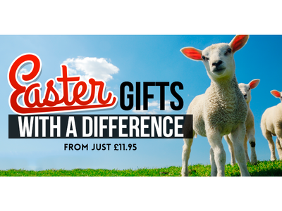 Easter Gifts Banner easter gifts banner newsletter sheep typography bebas neue grand hotel lamb sky clouds