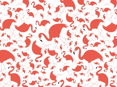 Flamingos pattern vector illustration seamless pattern animal bird flamingo