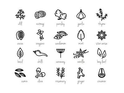 Spice illustration vector icon ingredients food spice