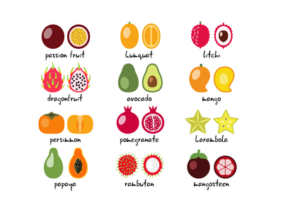 Exotic fruits simple illustration icon vector sweet food exotic fruit