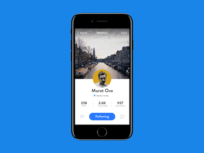 Profile Card ux ui photos layout iphone 7 iphone ios interface grid application app profile